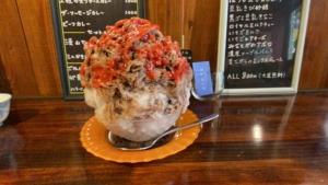 【2020・暑い夏には行列必須】神戸・湊川公園のかき氷屋「みなとやま」