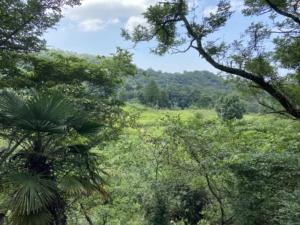 人間は自然を感じてこそ活きる・早朝の六甲山全縦走で出会う人々