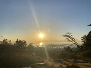 【毎日登山レポート】12月3日〜神戸アルプス・菊水山山頂