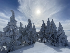 2021・冬山登山・樹氷の世界・兵庫最高峰・氷ノ山・流れ尾根↑東尾根↓